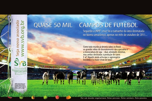 Ad Soccer field double page